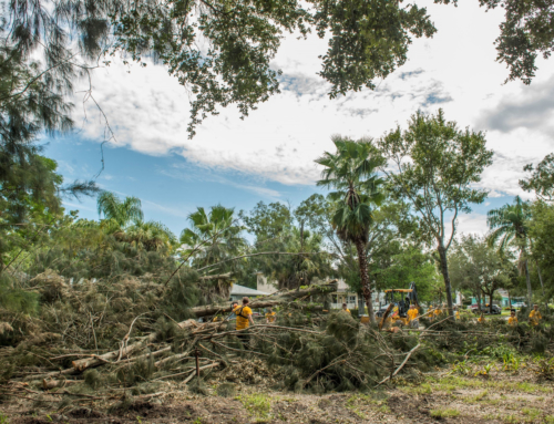 Katastrophenhilfe nach Hurrikan Irma